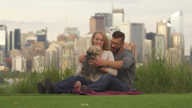 young couple play with dog in city park, skyline behind - blonde hair stock videos & royalty-free footage
