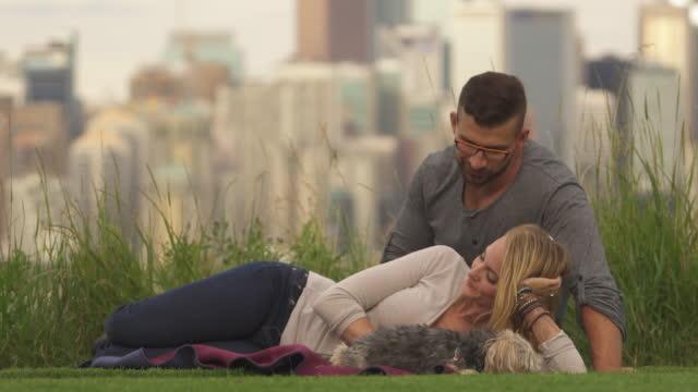 vídeos de stock e filmes b-roll de young couple play with dog in city park, skyline behind - calças de ganga