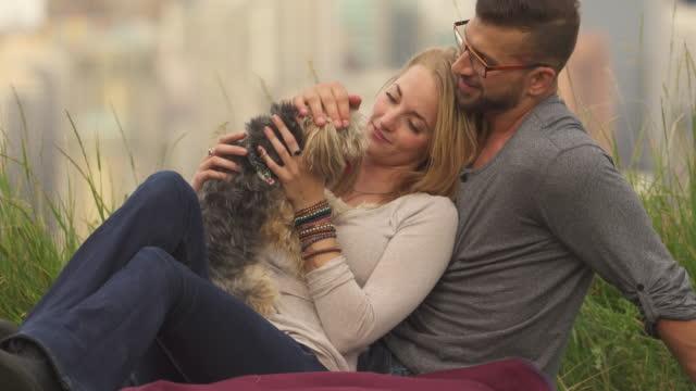 vídeos de stock e filmes b-roll de young couple play with dog in city park, skyline behind - atitude