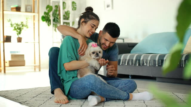 young couple playing with dog at home - overexposed stock videos & royalty-free footage