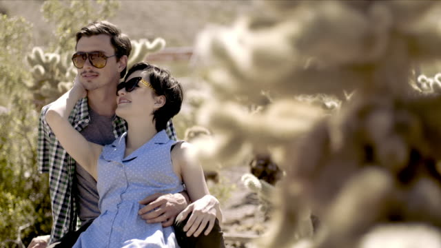 young couple recline in cactus grove - cute cactus stock videos & royalty-free footage
