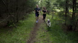 SLOW MOTION: Young couple running behind the dog