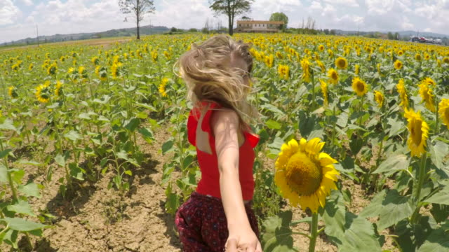 young couple running through sunflowers - sunflower stock videos and b-roll footage