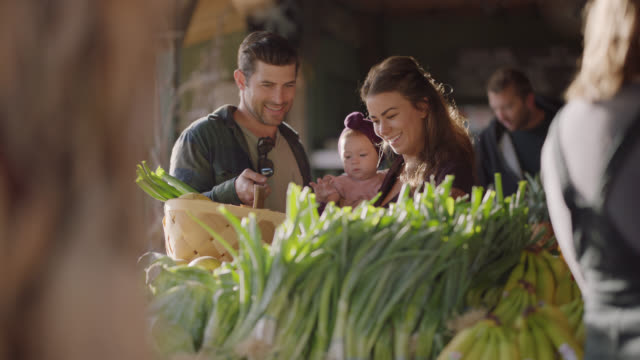 young couple shops for produce with their baby at a farmers market - lettuce stock videos & royalty-free footage
