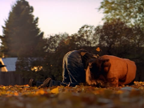 vidéos et rushes de ws young couple sitting on ground, playfully fighting and throwing autumn leaves - jouer à la bagarre