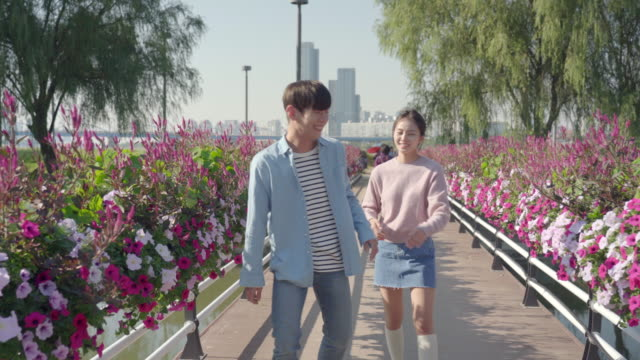vídeos de stock, filmes e b-roll de young couple strolling along a flower bed and teasing each other in the han river park - de braços dados