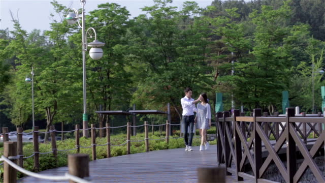 young couple strolling and dating in a park with their hands grabbed - south korea couple stock videos & royalty-free footage