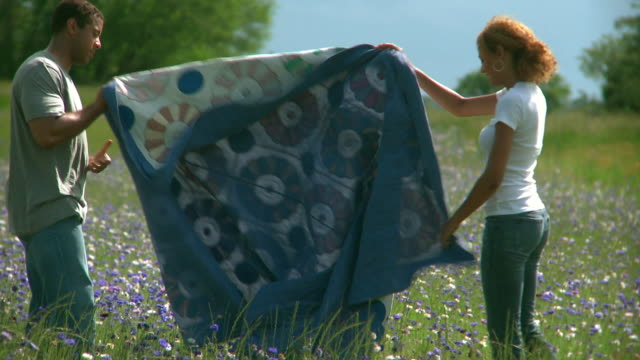 ms zo young couple unfolding and lying down on blanket on field of cornflowers, eastville, virginia, usa - eastville stock videos and b-roll footage