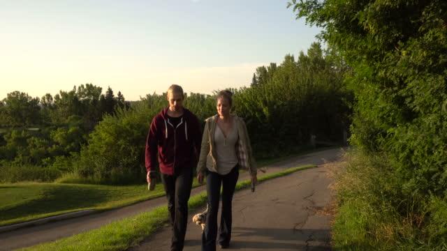 vídeos de stock e filmes b-roll de young couple walk with dog along golf course paths - trela de animal de estimação