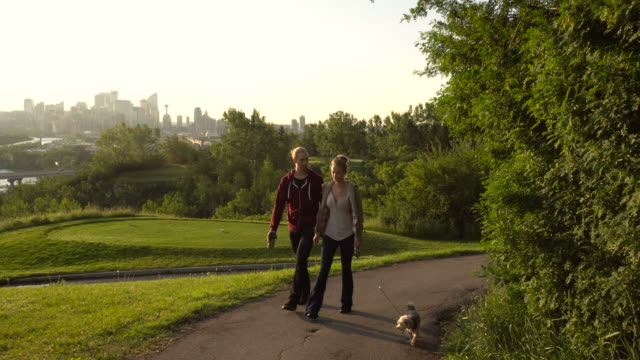 young couple walk with dog along golf course paths - links golf stock videos & royalty-free footage