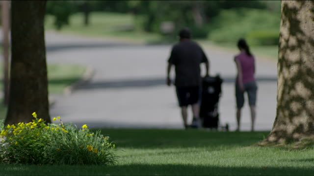 Young couple walking and pushing baby stroller on suburban street.  Flowers and trees in foreground are focused, while the couple are out-of-focus in the background.  Good for graphics.