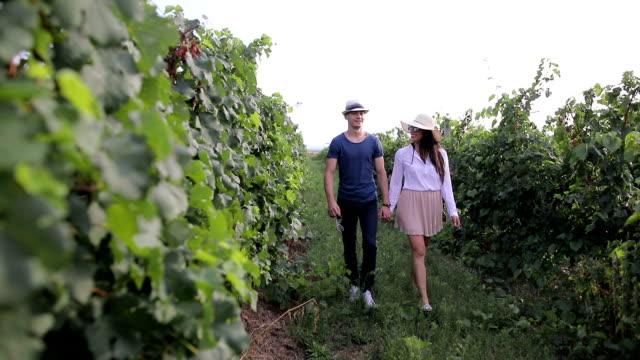 young couple walking away,through beautiful vineyard - vineyard stock videos & royalty-free footage