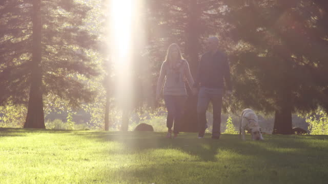 Young couple walking dog in park