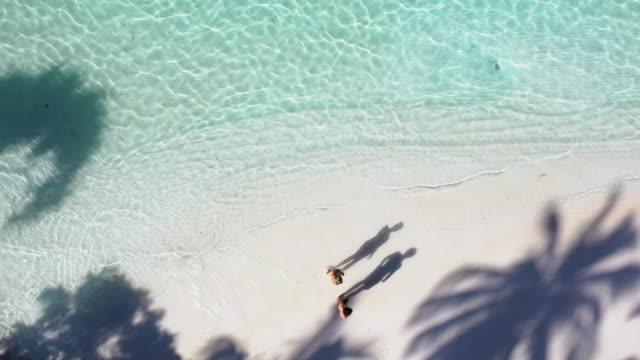 vidéos et rushes de jeune couples marchant sur la plage tropicale à l'ombre des palmiers - paradisiaque