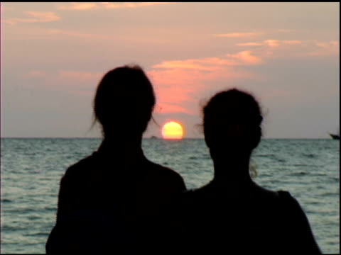 vidéos et rushes de jeune couple en regardant le coucher de soleil de puerto vallarta, mexique - petit groupe d'animaux