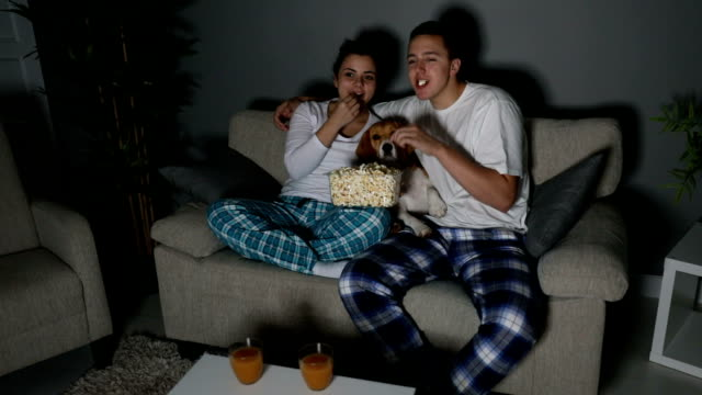 young couple watching tv together - reality tv stock videos & royalty-free footage