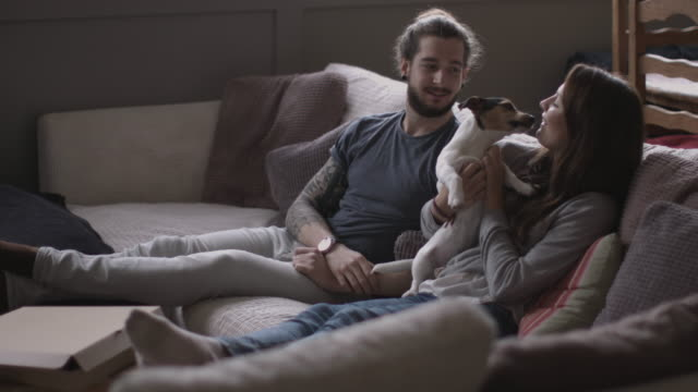 young couple with pet puppy jack russell - feet up stock videos & royalty-free footage