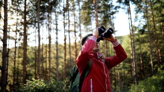 young explorer looking through binoculars - bird watching stock videos & royalty-free footage