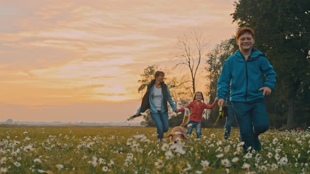 slo mo young family having fun running on a meadow - sunny stock videos & royalty-free footage
