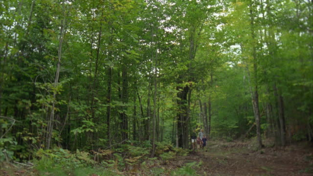 WS PAN A young family hiking in the woods/ Carrabassett Valley, Maine