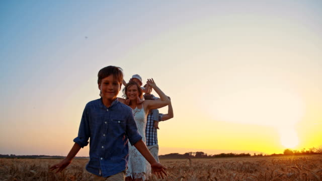 slo mo young family in wheat field at sunset - family with three children stock videos & royalty-free footage