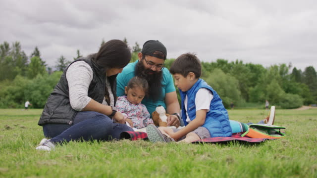 young family reading together in the park - indigenous peoples of the americas stock videos & royalty-free footage