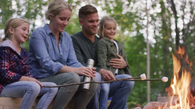 young family roasting marshmallows outdoors - marshmallow video stock e b–roll