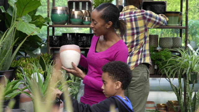 young family shopping in a greenhouse - whidbey island shop stock videos and b-roll footage