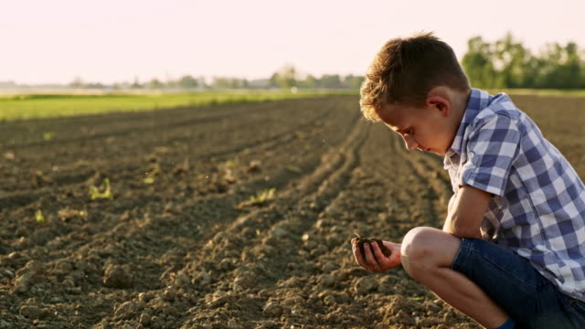 ds young farmer checking the soil in the middle of a field - solo un bambino maschio video stock e b–roll