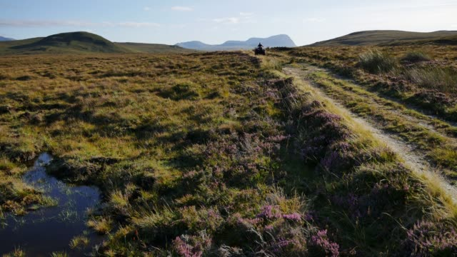 young farmer rides a quadbike over part of the 800 acres of mostly peat bog on the a'mhoine peninsula in sutherland scotland uk - which has been... - scottish highlands stock videos & royalty-free footage