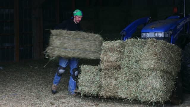 トラクターに干し草のベールを積み重ねる若い農家 - 干し草点の映像素材/bロール
