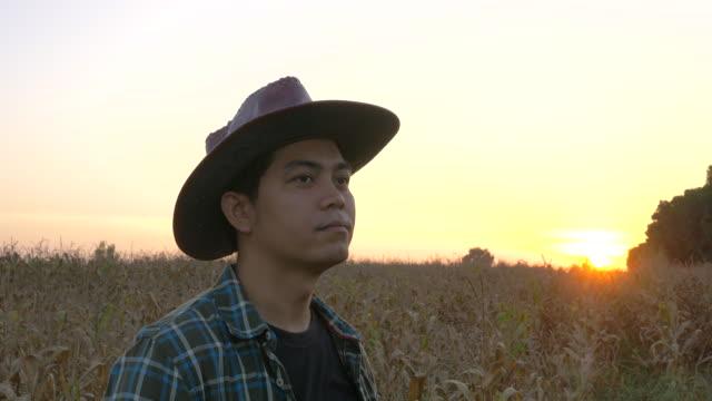 vídeos y material grabado en eventos de stock de pulgares de agricultor joven hasta éxito en campo del maíz - contenedor de muestras
