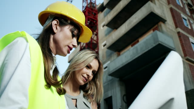 Young female architect with client