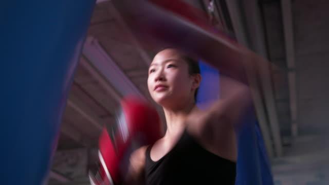 vídeos de stock, filmes e b-roll de young female athlete punching boxing bag - adolescentes meninas
