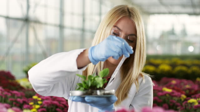 Young female biologist at greenhouse