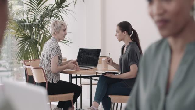 vidéos et rushes de young female businesswomen in a meeting - copy space