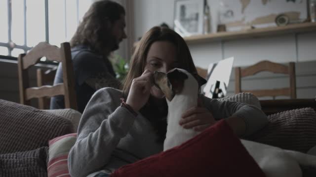 vídeos de stock e filmes b-roll de young female cuddling puppy at home - cachorrinho