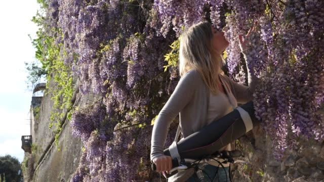 young female cyclist passes wisteria blossoms at sunrise - sensory perception stock videos & royalty-free footage