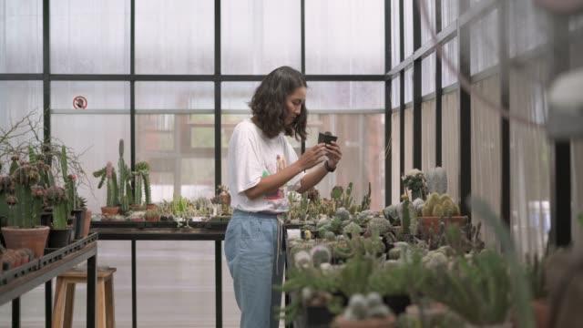 young female farmer checking the cactus pot plant - scienziata video stock e b–roll