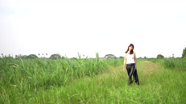 young female farmer walking in a field - human back stock videos & royalty-free footage