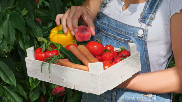 young female gardner  with crate full of vegetables - carrying stock videos & royalty-free footage