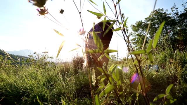 vídeos de stock e filmes b-roll de young female runner streches and practices yoga on hilltop field - membro humano