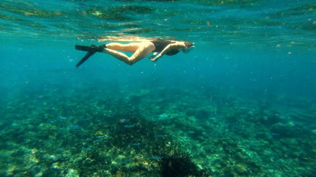 Young female snorkeling below the ocean surface Fiji