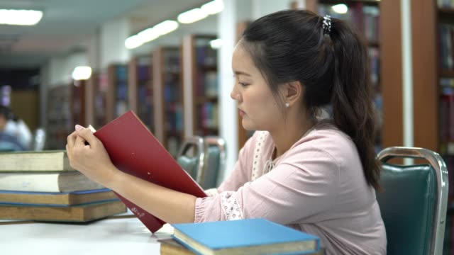 Young Female studying in the library