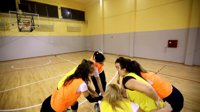 young female team celebrating success - volleyball sport stock videos & royalty-free footage