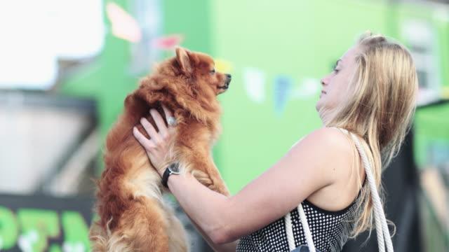 young female with pet dog - knähund bildbanksvideor och videomaterial från bakom kulisserna