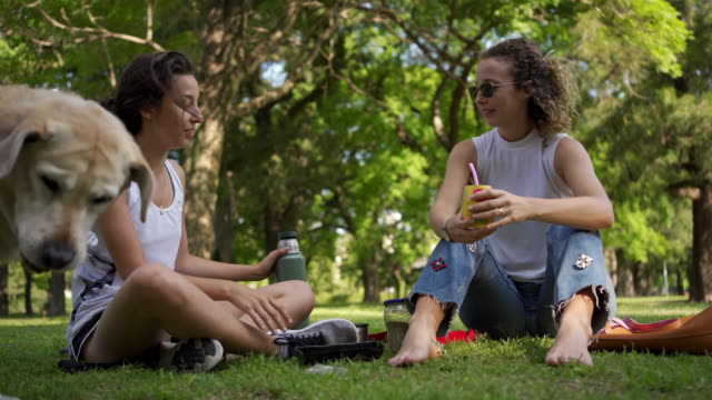 young females relaxing at a park with drinks - yerba mate stock videos & royalty-free footage