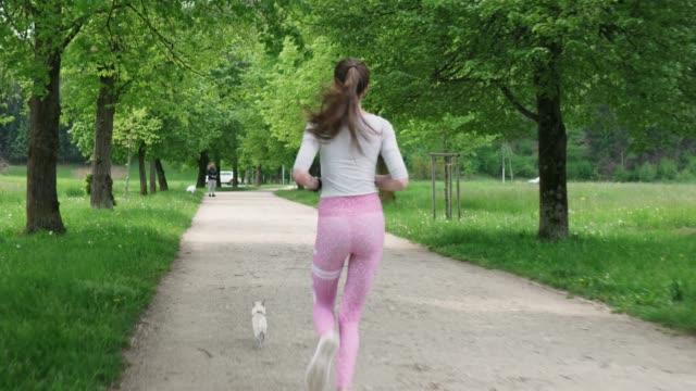 vidéos et rushes de jeune femme d'ajustement exécutant dans le parc avec son chihuahua - non urban scene