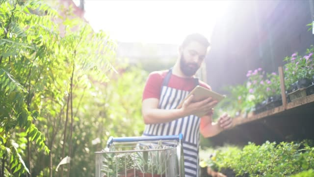 young florist with a shopping cart with some seedlings and using digital tablet to check products - fioraio negozio video stock e b–roll