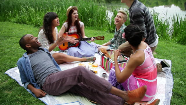 ws young friends having  picinc in park / nyc, new york, united states - picknick stock videos and b-roll footage